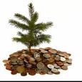 Fundamental Investment